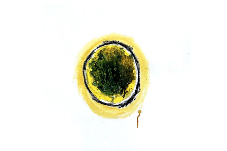Trame di corpi: Roth, Salinger